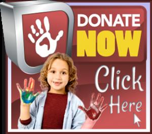 donate_now_v1-300x264